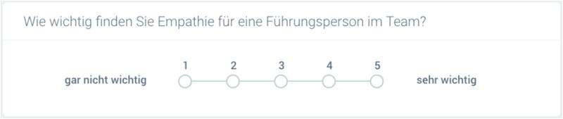 Fragetypen_Skala